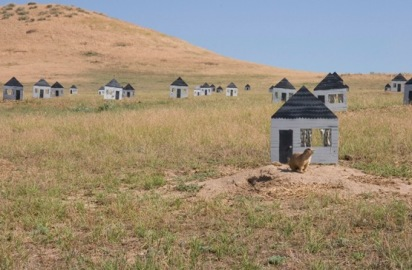 prairie-dog-houses-412x270